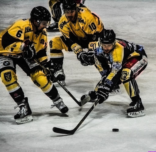 Sollte Bayreuth wieder zu einer Eishockeyhochburg werden? - Der Stadt und den Fans wäre es zu wünschen