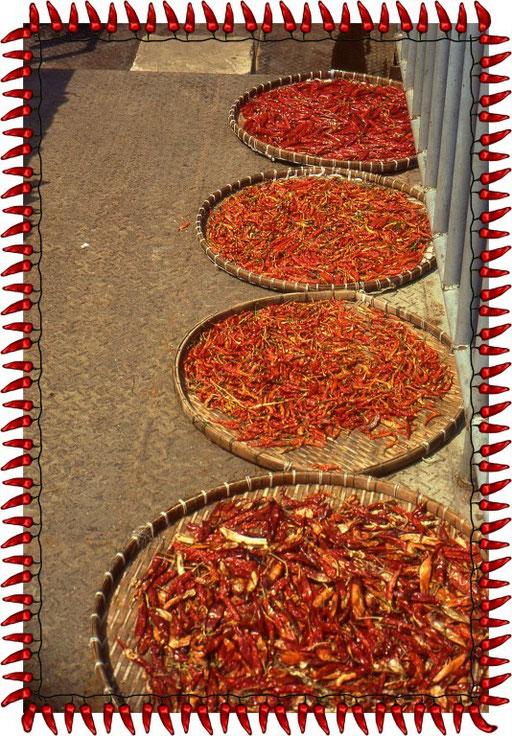 Chili öffnet in Thailand Herz und Zunge