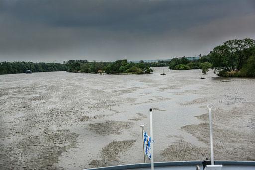 Donauauen nahe Regensburg