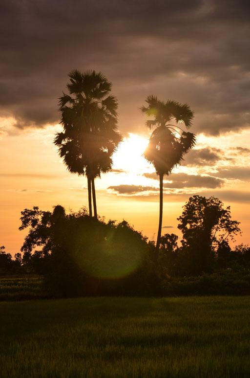 Sonnenuntergang in Ban Nong Muang (Isaan - Nordosten)