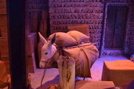 Im Dubai Museum (Foto: Daniel Schlenk)