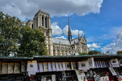 Die Kirche thront majestätisch auf der Ile de la Cite. Die Ile de la Cite´ ist die Keimzelle des  heutigen Paris