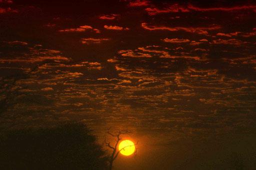 Hakuna Matata - es wird Tag in der Namib