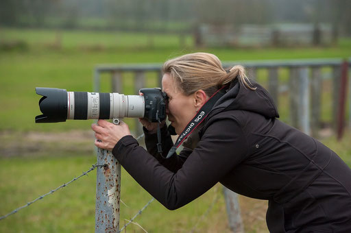 Beim Gänse-Shooting am Niederrhein (Danke an Josef Gaspers für das Foto)