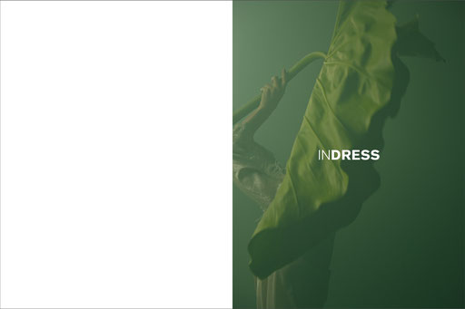 indress,catalogue,catalog,audebuttazzoni, aude buttazzoni, artwork, art direction,