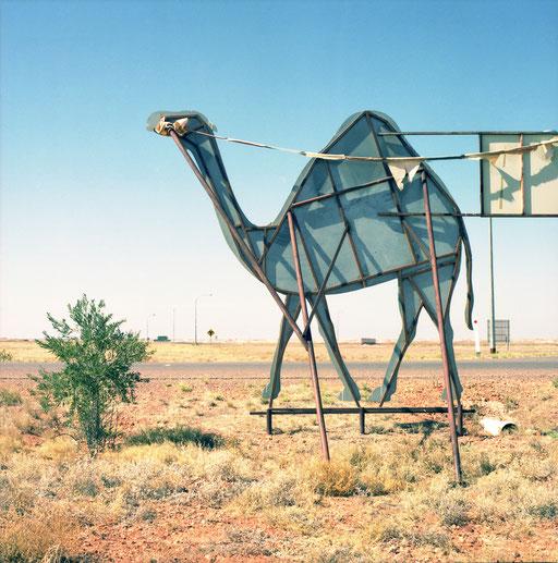 aude buttazzoni, wanderings, photograph, photographer, Australia