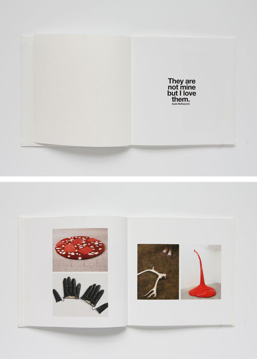 iconography,book,aude buttazzoni,they are not mine,but,I love them
