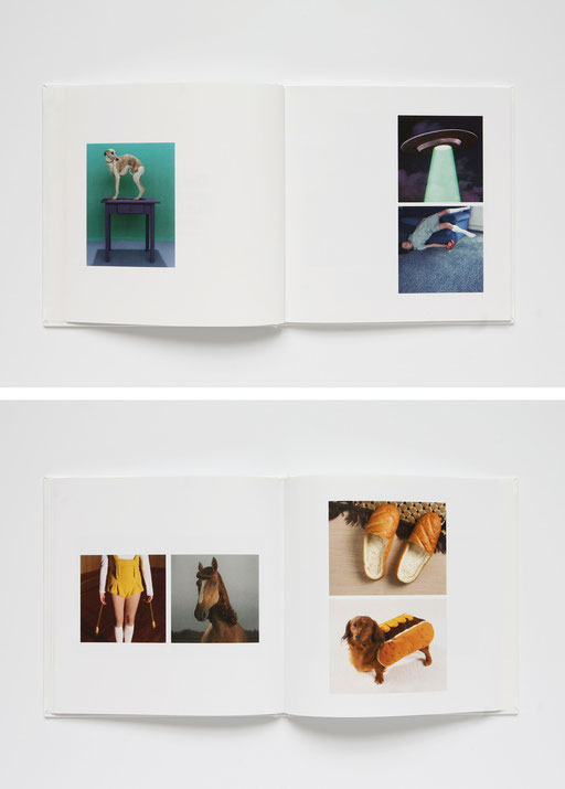 iconography, they are not mine, but I love them, aude buttazzoni, book