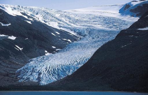 Norvège,08 1997,glacier du Swartisen