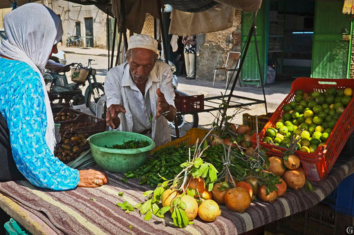 Tunisie,09 2011,Tozeur
