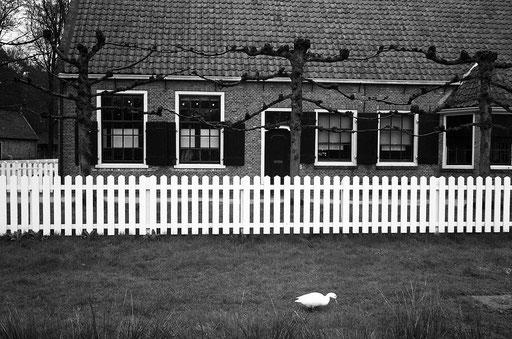 Marken,Pays-Bas,07 2000