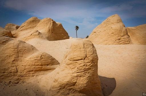 Tunisie,09 2011,les dunes pétrifiées de Fatnassa