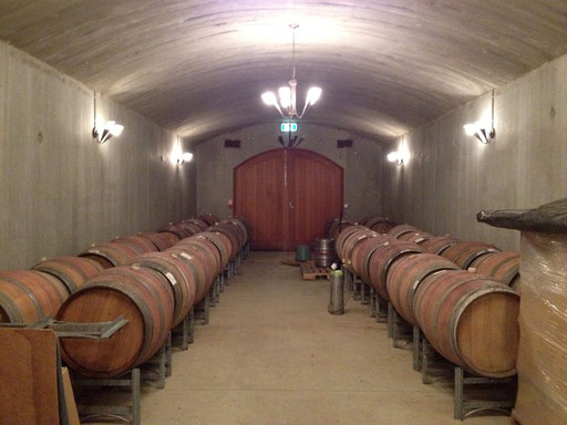 Omaha Bay Vineyard cellar, Matakana
