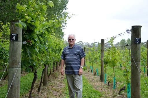 Harry of Twin Totara vineyard