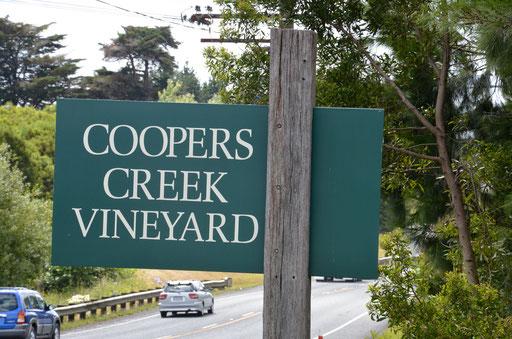 Coopers Creek vineyard, Waimauku