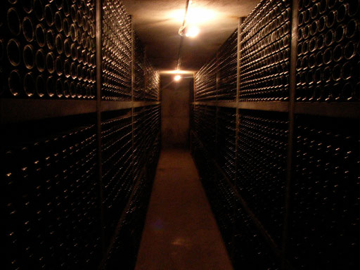 Cellar of Chateau Vignelaure Provence