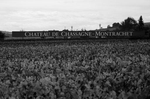 Chateau de Chassagne-Montrachet