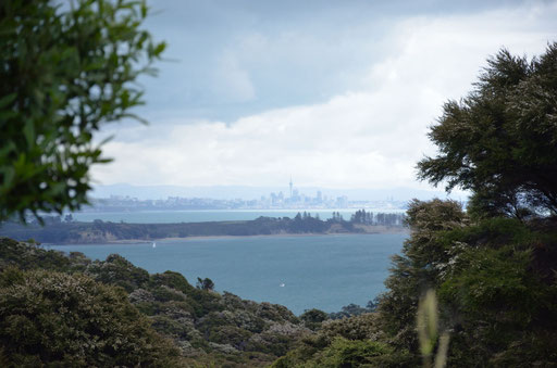 View to Auckland City from Mudbrick
