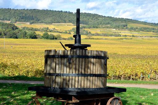 Wine Press Puligny-Montrachet