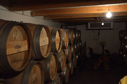 Stonyridge cellar, Waiheke Island