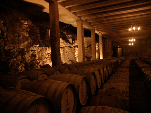 Cellar of Chateau Vignelaure Provence