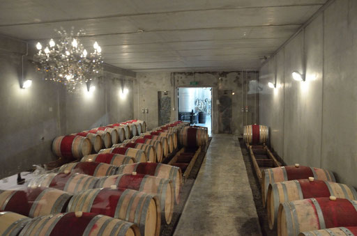 Cable Bay cellar, Waiheke Island