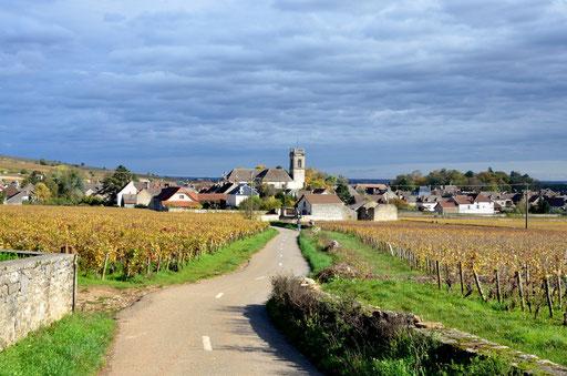 Pommard Village