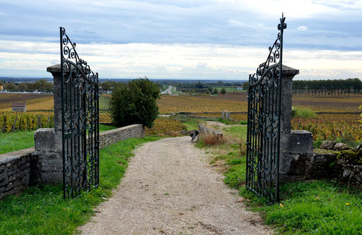 Entrance to a Beaune vineyard