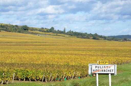 Puligny-Montrachet Chardonnay heaven