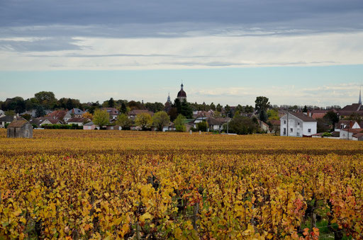Beaune from the surrounding vineyards