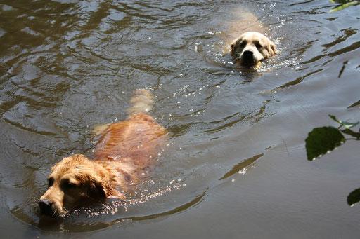 Schwimmen hält jung!