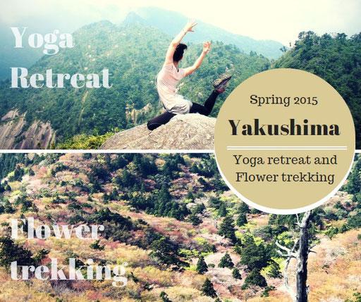 屋久島,白谷雲水峡,もののけの森,太鼓岩,お花見,ヨガ,リトリート,女性一人旅,絶景