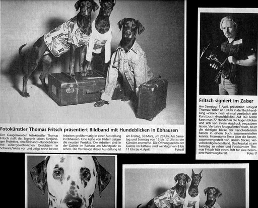 Hundeblicke.Fritsch