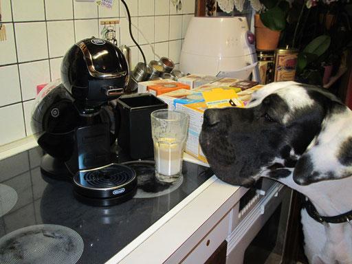 auch Hundi liebt den Kaffee
