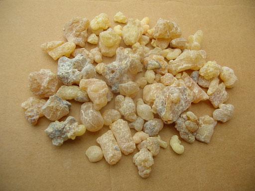 Olibanum Weihrauch Tunesien frankincense