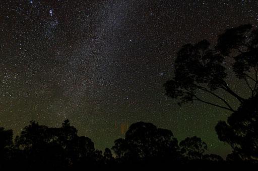 Bushfire Skies