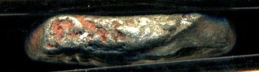 1433 -CENOMANI LATO A