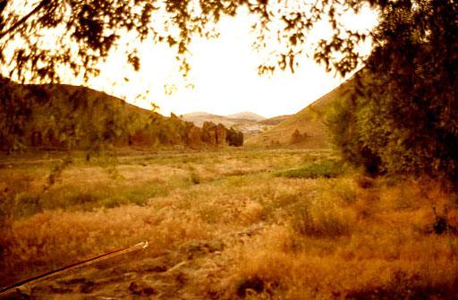 die Wiesen hinter dem Fluß wild und unbewirtschaftet