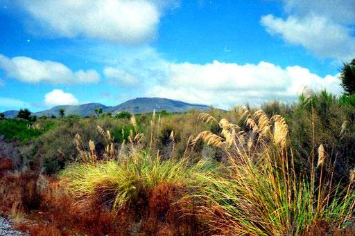 der äöteste Naturpark der Welt - UNESCO-Weltkulturerbe seit 1990