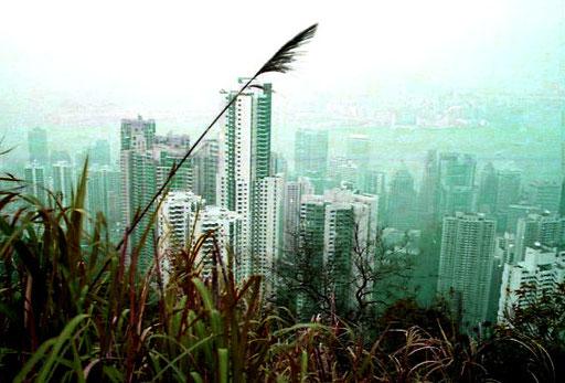 die Metropole Hongkong - ein dampfender Moloch