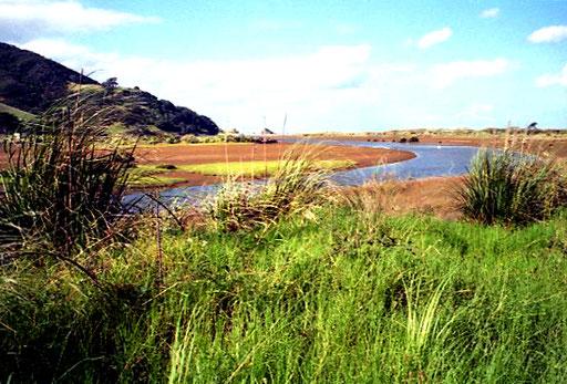 Flussdelta in freier Wildnis