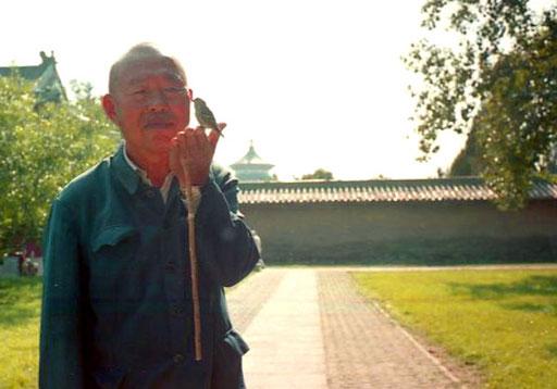Sheian - ein Vogel-Flüsterer