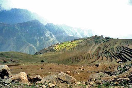 fruchtbare Terrassen wie in den Hochlagen von Peru