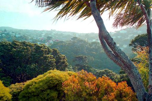 die Umgebung von Wellington einfach traumhaft