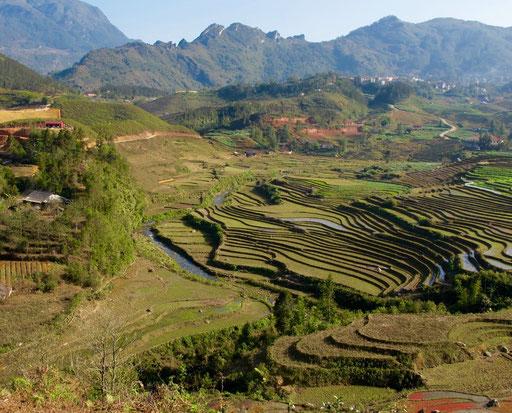 zu erkennen sind die vielen Wasserläufe der Reisfelder