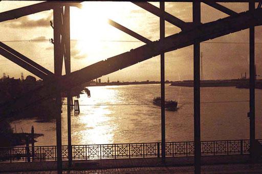 die Elb-Brücken vor Hamburg im Abendlicht