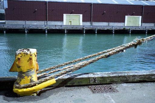 sicher im Hafen vertäut