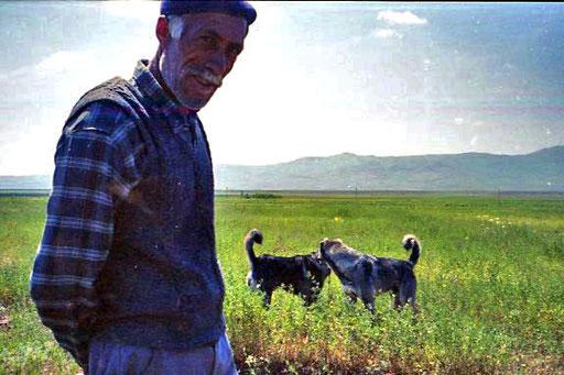 ein Bauer mit seinen Hirtenhunden