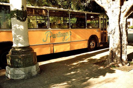 Havanna - ein alter Stadtbus für das Volk