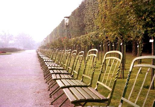 im Park des Schloss Bevedere
